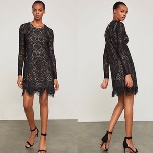 BCBGMAXAZRIA Marae Long Sleeve Lace Shift Dress